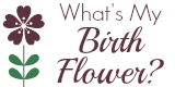 Birth Flowers By Month
